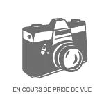 Furcifer pardalis boraha ( sainte marie) femelle 8 mois souche F1 189.00€